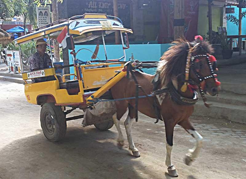 cidomo Trawangan - Indonésie