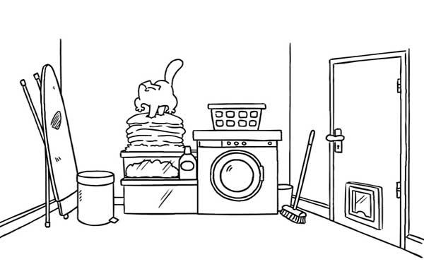 le chat et le linge propre