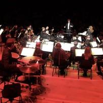 Pierre et le Loup à la Philharmonie de Paris : un concert familial !